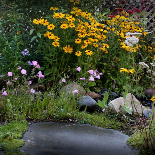 annuals and perennials with stream landscape design