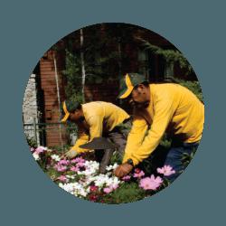 gardening-services-south-lake-tahoe