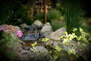 perennials and annuals incorporated into water feature